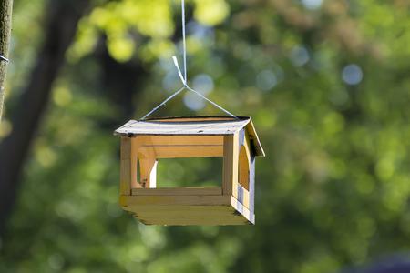A bird feeder hangs in the tree