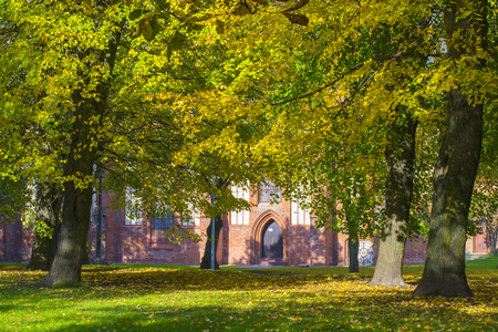 Autumn on the island of Kant in the Kaliningrad Stock Photo