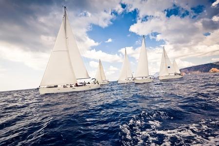 yacht race: Velero yates de velas blancas Foto de archivo