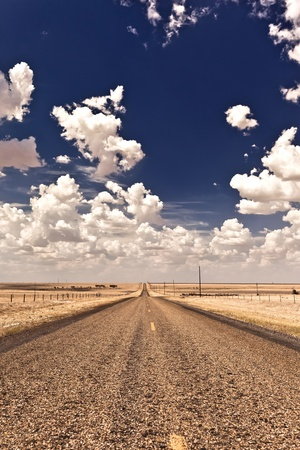 roadtrip: Country road