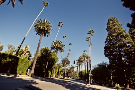 angeles: Palm streets of Beverly Hills Stock Photo