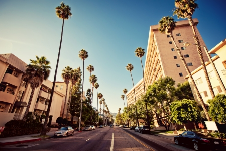 hollywood   california: Palm streets of Beverly Hills Stock Photo