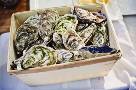 Fresh oysters on ice at an outdoor cafe  photo