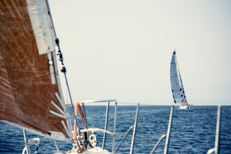Sailing ship yachts with white sails in a row photo