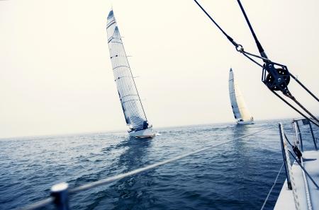 公開した海で白い帆ヨット船