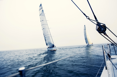 sailboat: Sailing ship yachts with white sails in the open sea