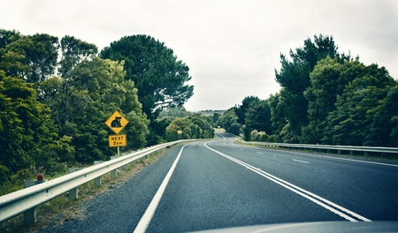 Koala warning sign on unknown road in Australia photo