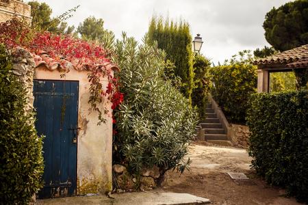 View of yard in Saint Tropez, French Riviera 版權商用圖片