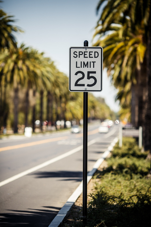 Speed Limit 25 sign on the road with palms, USA photo