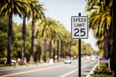 Maximální povolená rychlost 25 nápis na silnici s palmami, USA Reklamní fotografie