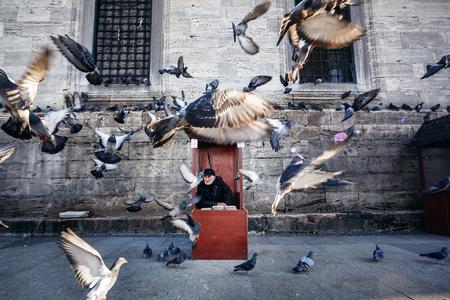 palomas volando: ESTAMBUL, Turqu�a - 28 de noviembre: Fot�grafo vieja en cabina de color rojo con la alimentaci�n para las palomas volando delante de �l, Estambul, Turqu�a, el 28 de noviembre 2014