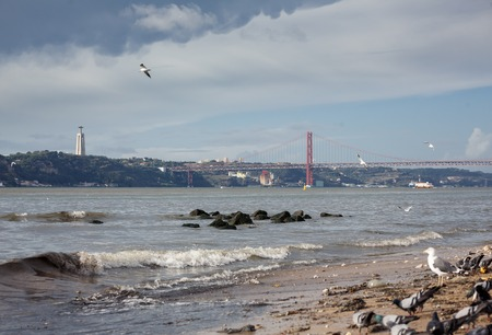 the tagus: Birds on beach of the Tagus river and The 25 de Abril Bridge on background, Lissabon, Portugal Stock Photo