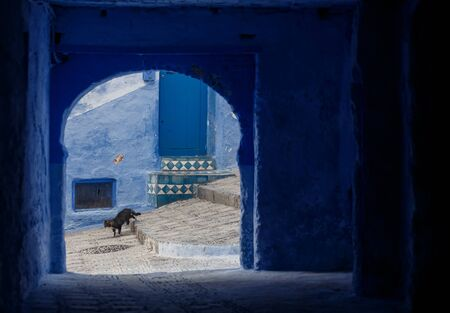 touristic: One of the streets in Chefchaouen in Morocco. All the houses and walls are painted blue. Popular tourist destination in Morocco. Stock Photo