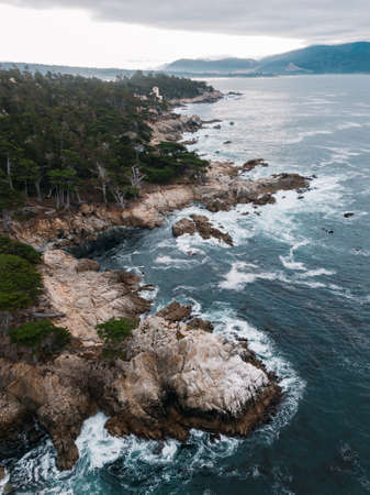 Lone Cypress tree scenic aerial view along famous 17 Mile Drive road in Monterey.