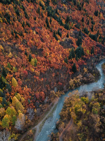 Aerial view of Arrowtown, New Zealand. Beautiful multicolor autumn trees with the town