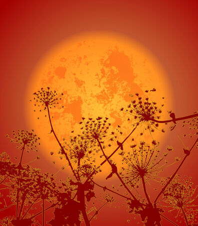 illustration of night flowers, background, vector clip-art Stock Vector - 24520726