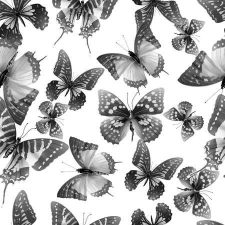 springtime: Seamless pattern from butterflies, vector illustration, clip-art