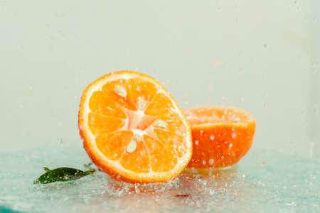 three orange tangerines with a branch and leaves stand in water on glass under drops of water on a white background copy space