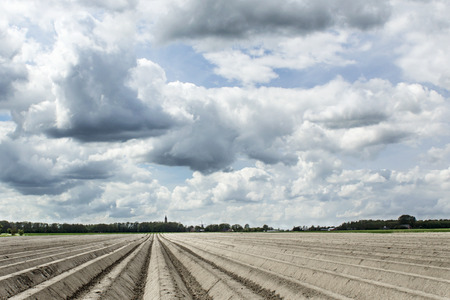 cloudy sky over a field or just planted potatoes