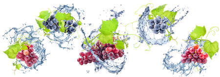 Grapes doused with water Stock Photo