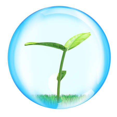 shoots of plants in sphere for use in presentations, manuals, design, etc Stock Photo - 18213380