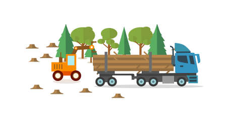 Wood harvested is sent to a paper processing plant for use in presentations, education manuals, design, etc