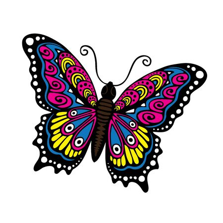 rare background: Fantasy Butterfly