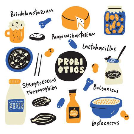 Probiotici. Illustrazione di cibo in stile scarabocchio e nomi di batteri probiotici. Vettore