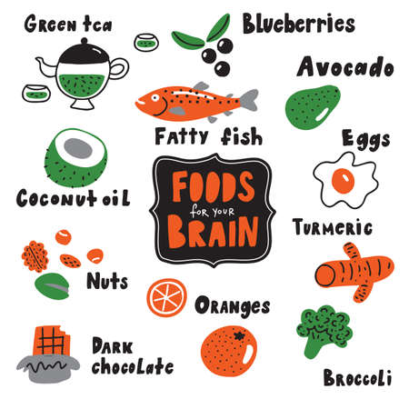 Food for your brain. Doodle illustration of different healthy food . Made in vector Ilustrace