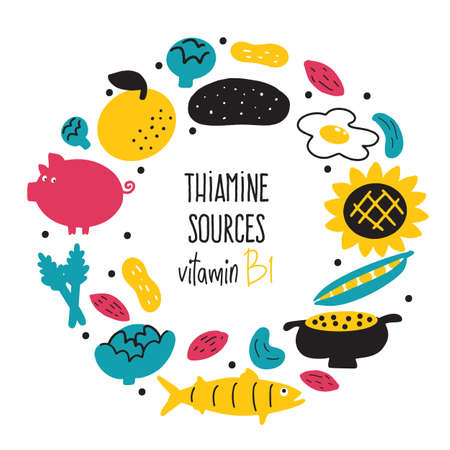 Vitamin B 1 food sources, thiamine. Vector cartoon illustration. Round composition Illustration
