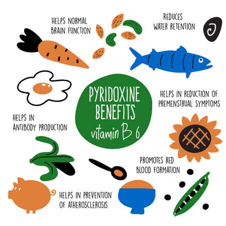 Vitamin B 6 food sources,pyridoxine. Vector cartoon illustration and information about health benefits of vitamin B 6.