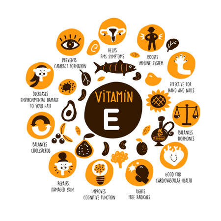 Vector cartoon illustration of Vitamin E sources and information about it benefits