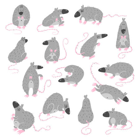 Funny  set of rats in different poses. 2020 year symbol.