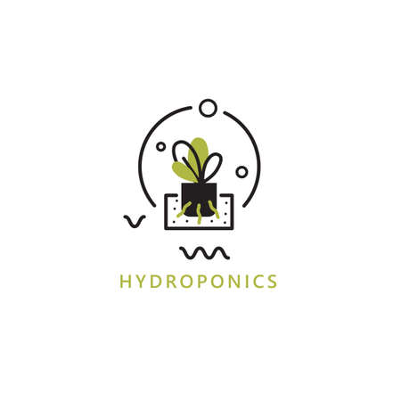 Hydroponics. Vector illustration of plant on water without soil. Home agriculture concept.