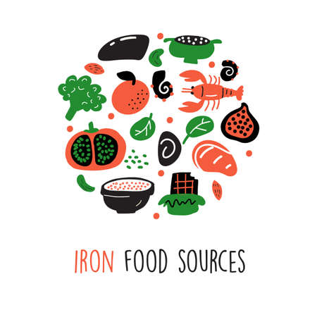 Iron food sources. Vector cartoon illustration of iron rich foods Round composition. 일러스트
