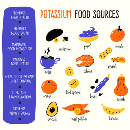 Vector cartoon illustration of potassium food sources and information about it benefits. Infographic poster Ilustração