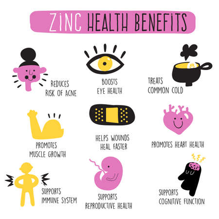 Zinc health benefits. Infographics. Vector cartoon illustration Illustration