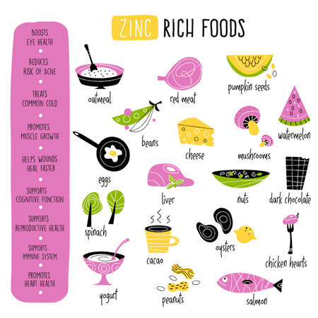 Vector cartoon illustration of zinc food sources and information about it benefits. Infographic poster Illustration