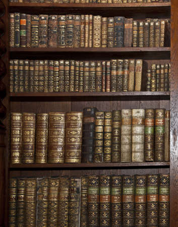 Bookcase: historic old books in old shelf library
