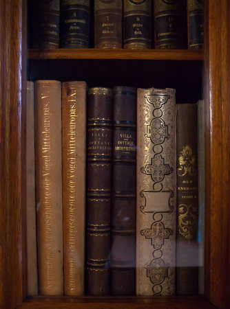 thesaurus: historic old books in a old library