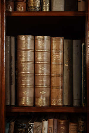 thesaurus: historic books in a old library