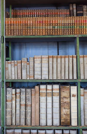 books library: historic old books in ancient library, wooden bookshelf