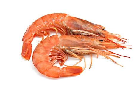 shrimp: two prawns, isolated on white background Stock Photo