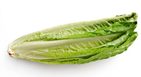 horizontal position:   lettuce leaf in a horizontal position, isolated on white background Stock Photo