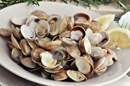 Clam dish decorated with sprig of rosemary in the background Stock Photo