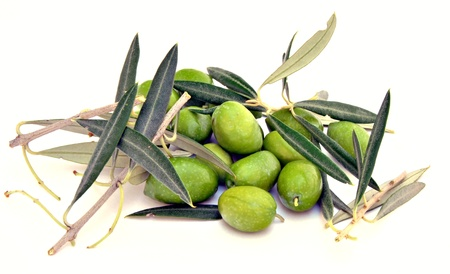 Green olives with olive leaves surrounded by white background