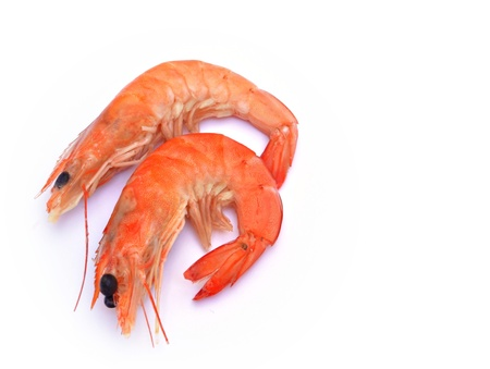 next to each other: Two shrimp next to each other surrounded by white background Stock Photo