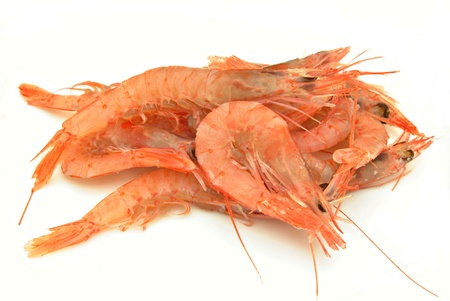 incommunicado: Prawns stacked next to each other surrounded by white background