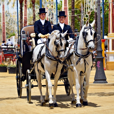People in carriage horses walking in the royal house of the fair on the horse fair the day May 12, 2012 in Jerez de la Frontera, Spain  Stock Photo - 13601888
