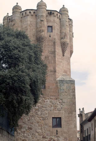 Medieval tower in the wall of the Spanish city of Salamanca photo